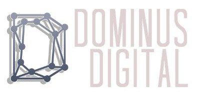 Dominus Digital Asset Management – Fund Info